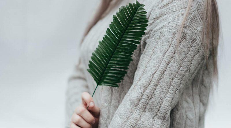Ekologické oblečenie